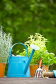 Outdoor gardening tools — Stock Photo