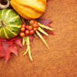 Pumpkins with fall leaves with seasonal background — Stock Photo
