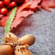 Nuts and berrys autumn background — Foto Stock