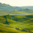Morning on countryside in Tuscany — Stock Photo #32376753
