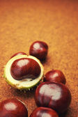 Groups of chestnut nuts on white close up . brown background — Stock Photo