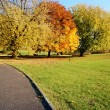 Stockfoto: Autumn park