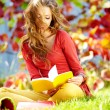 Brunette girl reading a book in the park — Stock Photo #33317377