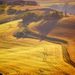 View of typical Tuscany landscape — Stockfoto