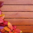 Autumn leaves over wooden background with copy space — Stock Photo