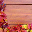 Autumn Leaves over wooden backgound — Stock Photo #33750601