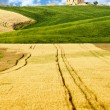 Image of typical tuscan landscape — 图库照片