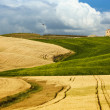 Scenic view of typical Tuscany landscape — Stock Photo