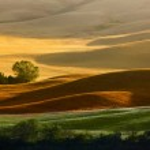 Countryside landscape in Tuscany region of Italy — Stock Photo