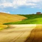 Tuscany hills — Stock Photo #33751613