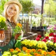 Stock Photo: Florists woman