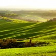 Picturesque Tuscany landscape — Foto Stock #38753477