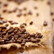 Fresh coffee beans on wood background, Macro close-up for design — Stock Photo #39674553