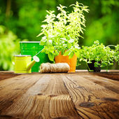 Outdoor gardening tools on old wood table — Stock Photo