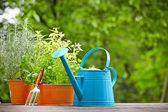 Gardening and hobby — Stockfoto