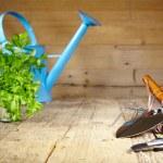 Gardening tools — Stock Photo #42175975