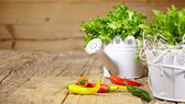 Fresh herbs on a rustic table in late day sunlight — Stockfoto