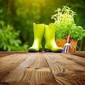 老木桌上的户外园艺工具 — 图库照片