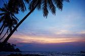 Sunrise on Sri Lanka beach — Stock Photo