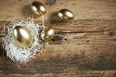 Golden easter eggs in nest — Stockfoto