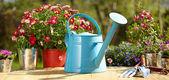 Açık Bahçe aletleri — Stok fotoğraf