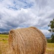 Hay bales — Stock Photo #47922989