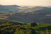 Countryside, Tuscany — Stock Photo