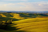 Italy Tuscan landscape — Stock Photo