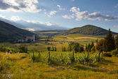 Hills of Tuscany in the morning — Stock Photo