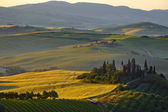 Hills of Tuscany in the morning — Photo
