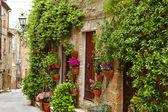 Flowers lining stone wall — Stock Photo