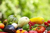świeżych organicznych warzyw i owoców — Zdjęcie stockowe