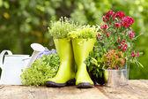 Flores e ferramentas de jardinagem ao ar livre — Foto Stock