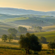 Countryside, San Quirico d Orcia , Tuscany, Italy — Stock Photo #50282989