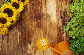 Frame of garden tools and flowers. Top view.  — Stock Photo