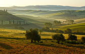 Countryside, San Quirico d Orcia , Tuscany, Italy — Stock Photo