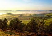 Typical Tuscany landscape, Italy  — Foto de Stock