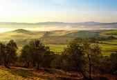 Typické toskánské krajiny, itálie — Stock fotografie