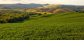 Panoramic view of  hills of Tuscany Italy in San Quirico d Orcia — Stock Photo