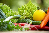 Fruit and vegetable borders — Stock Photo