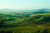 Tuscany hills — Stock Photo