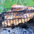 Barbecue chicken legs grilled during picnic — Stock Video
