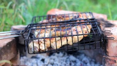 Barbecue chicken legs grilled during picnic — Vídeo Stock