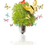 Green energy concept — Stock Photo #14138926