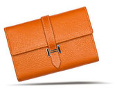 Big Brown purse with shadow — Стоковое фото