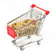 Shopping Cart with money — Stock Photo #22491081