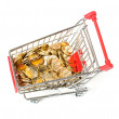 Shopping Cart with money — Stock Photo #22947164