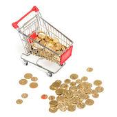 Shopping Cart with money on white — Stock Photo