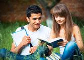 两个学生男生和女生在公园草地与书上学习 — 图库照片