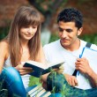 Two students studying in park on grass with book outdoors — ストック写真